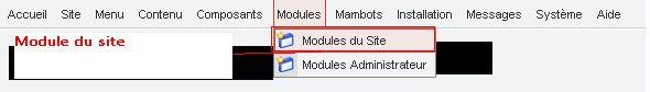 module-joomla