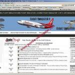 Flight Simulator combat flight Simulator