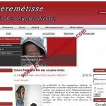 Template Joomla pour le site Sphèremétisse