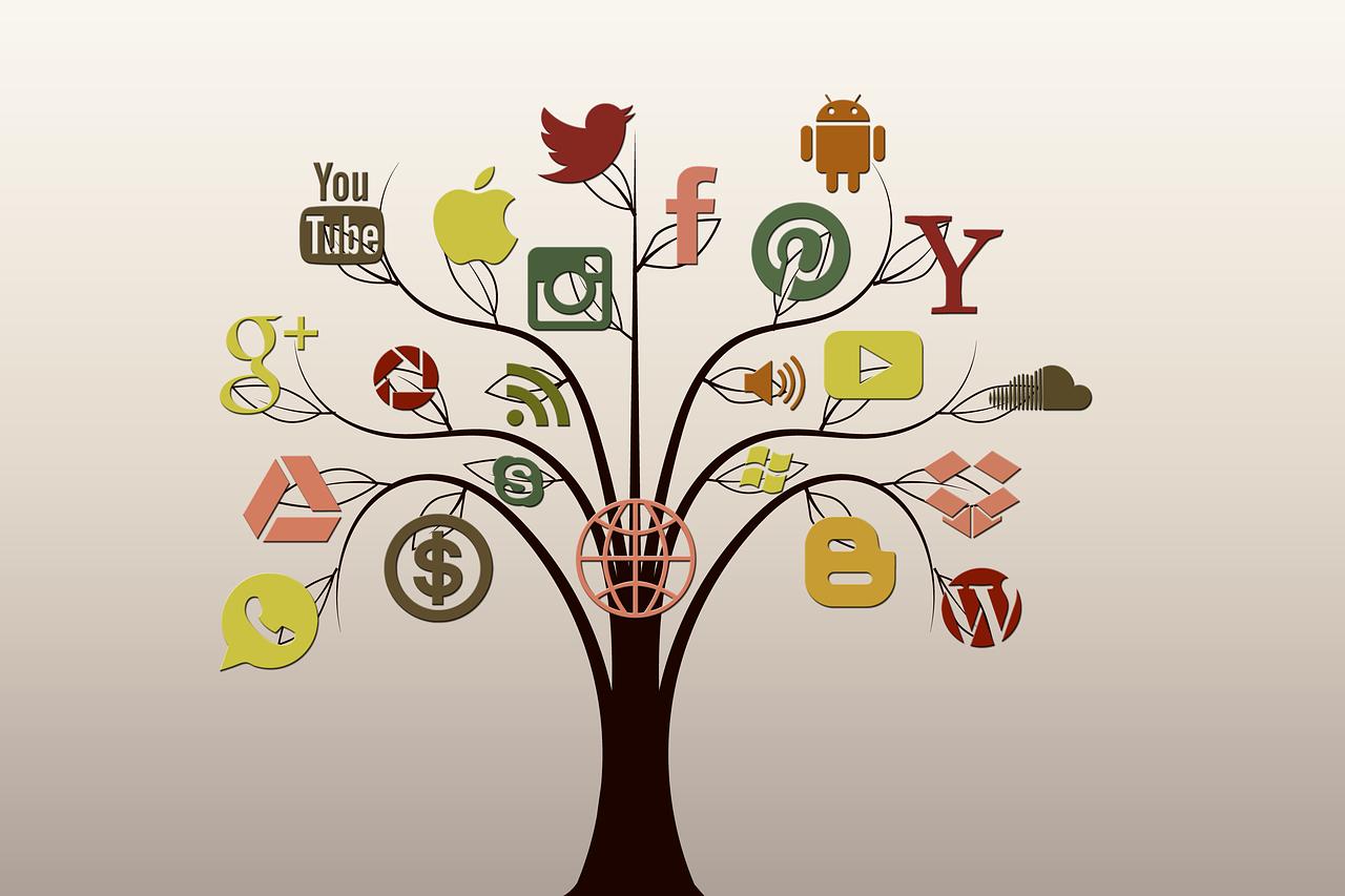 Privilégier les réseaux sociaux phares